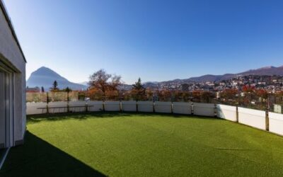 How Does Natural Grass Maintenance Compare to Residential Synthetic Grass?